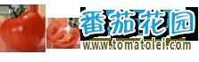 番茄花园 S8 G9500 / S8+ G9550 v1.0 发布